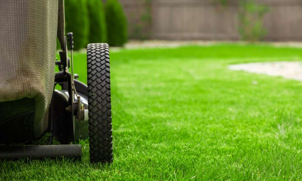 Best Way to Get Lawn Care Customers