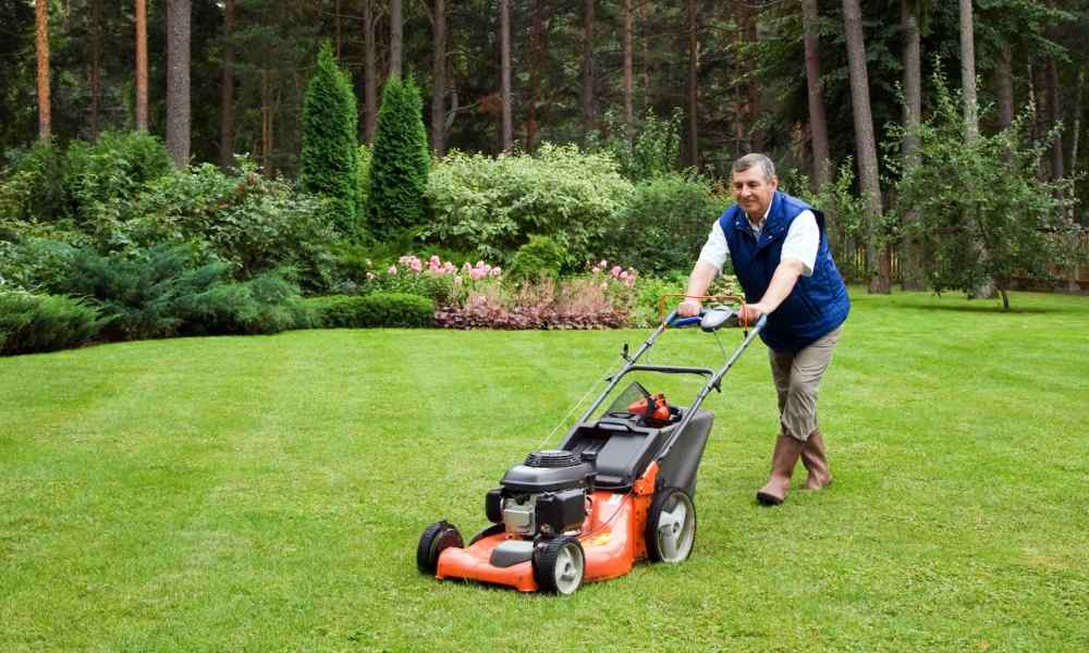 Lawn Care Business Plan