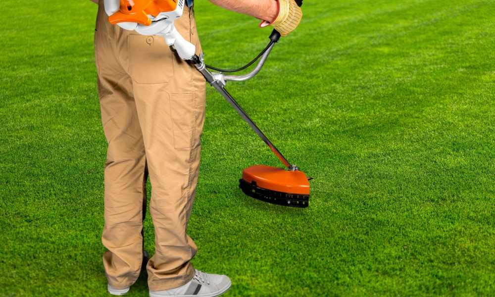 Lawn Care Estimate