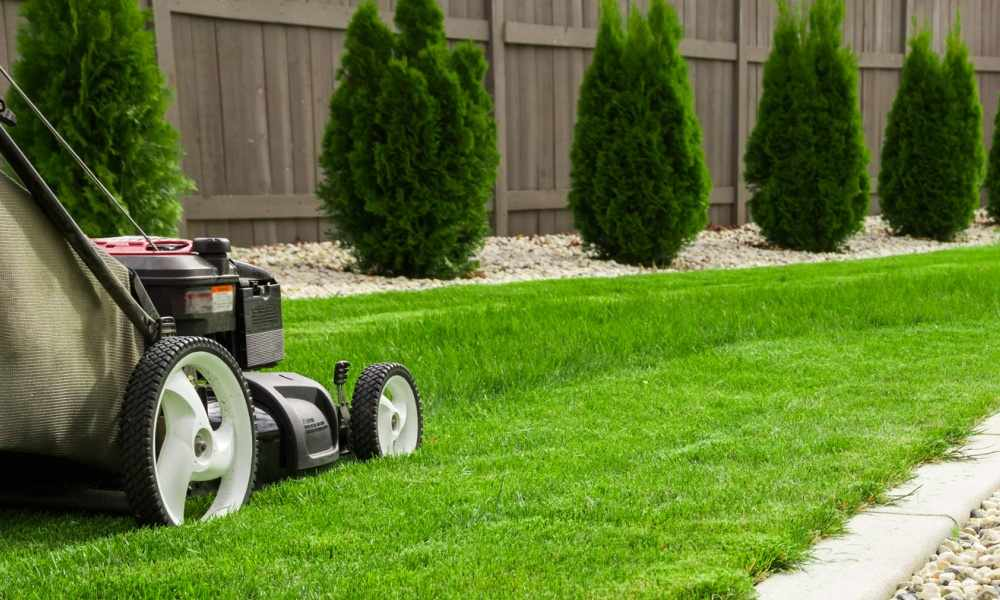Lawn Service Business Cards The Lawn Solutions