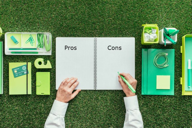 Starting a Lawn Care Business Pros and Cons