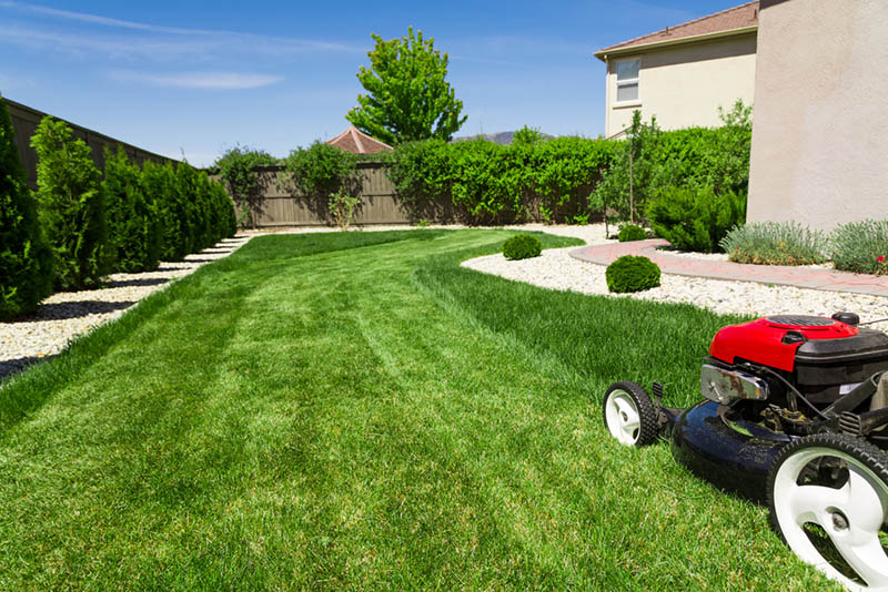 residential vs commercial lawn care