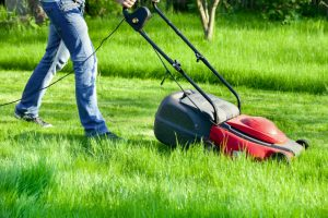 Corded Electric Lawn Mower Reviews – 3 of the Best