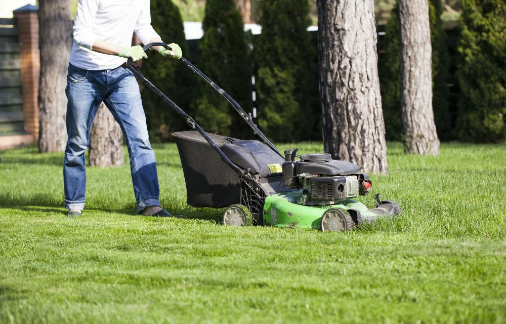 How Long Do Lawn Mowers Last?