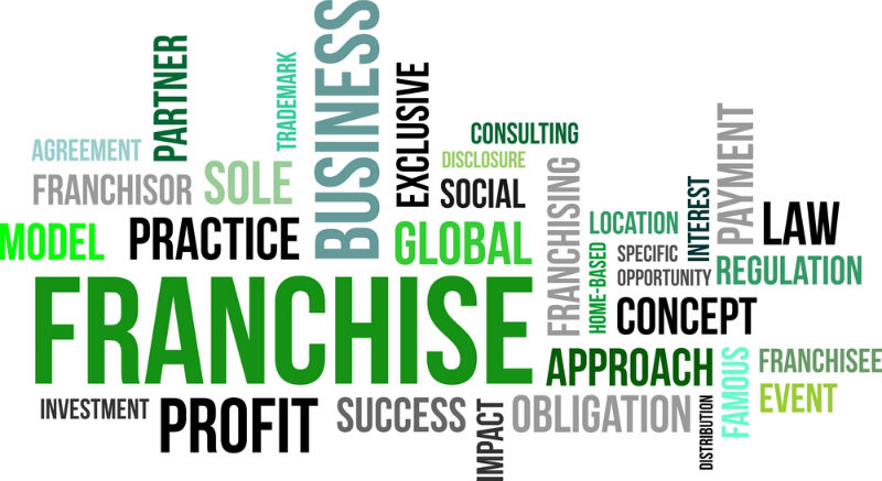 Lawn Care Franchises on Sale – Should You Buy One?