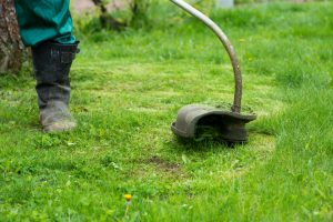 Gas vs Electric Trimmers For Lawn Care Pros