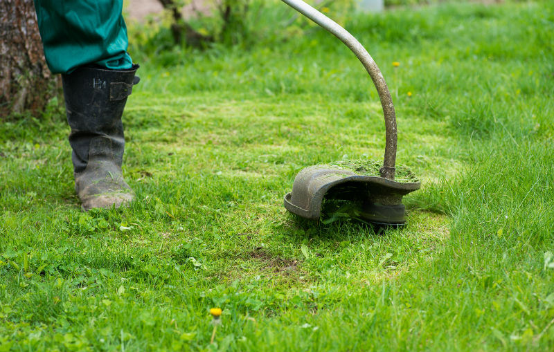 Gas vs Electric Trimmers For Lawn Care Pros - The Lawn Solutions