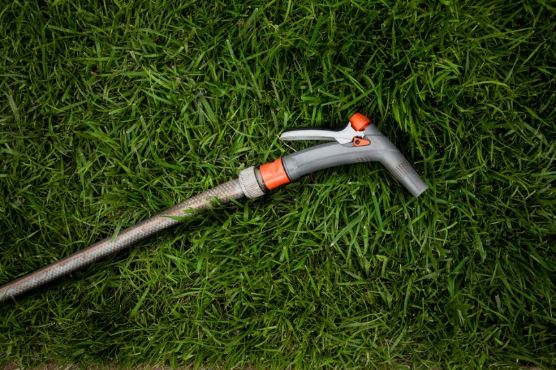 how to fix a dead lawn - add water